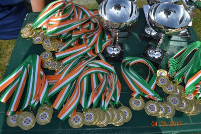 Medals and Cups
